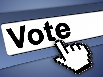 Electronic voting, citizen participation and public policy in Brazil